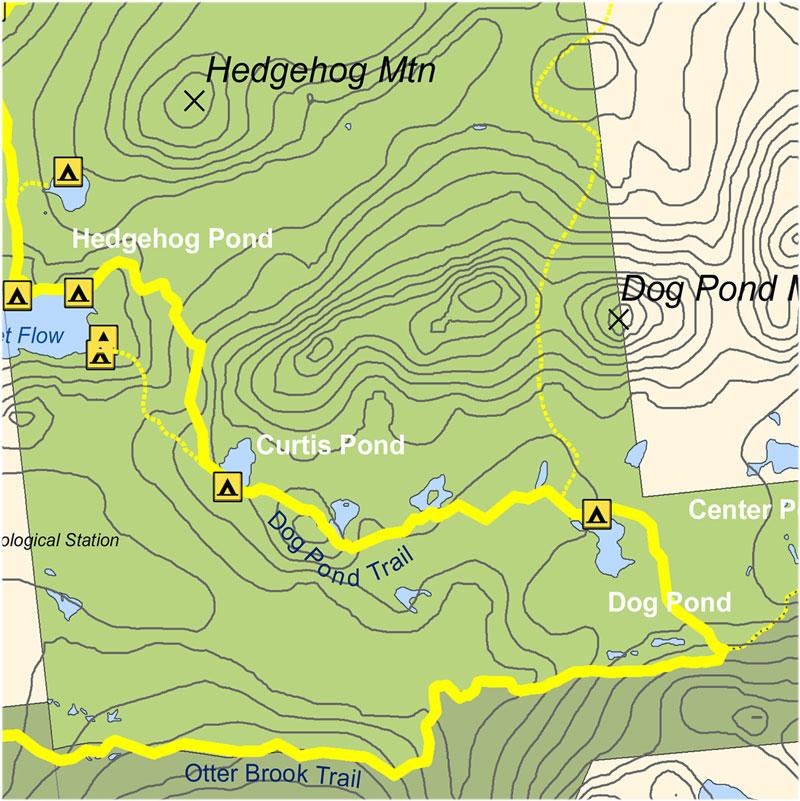 Dog Pond Trail
